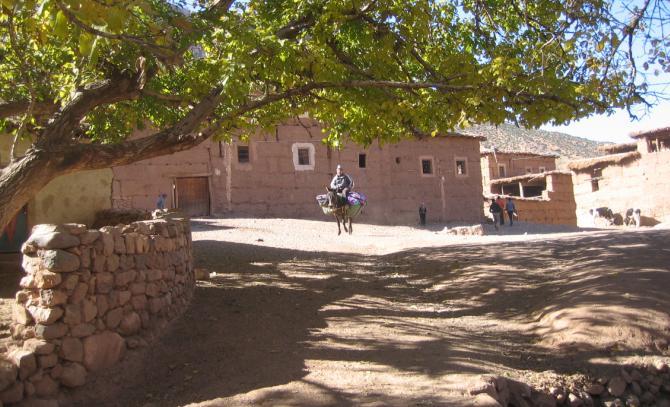 Youssef, proprietaire du gîte et sa mule bien chargée de provisions